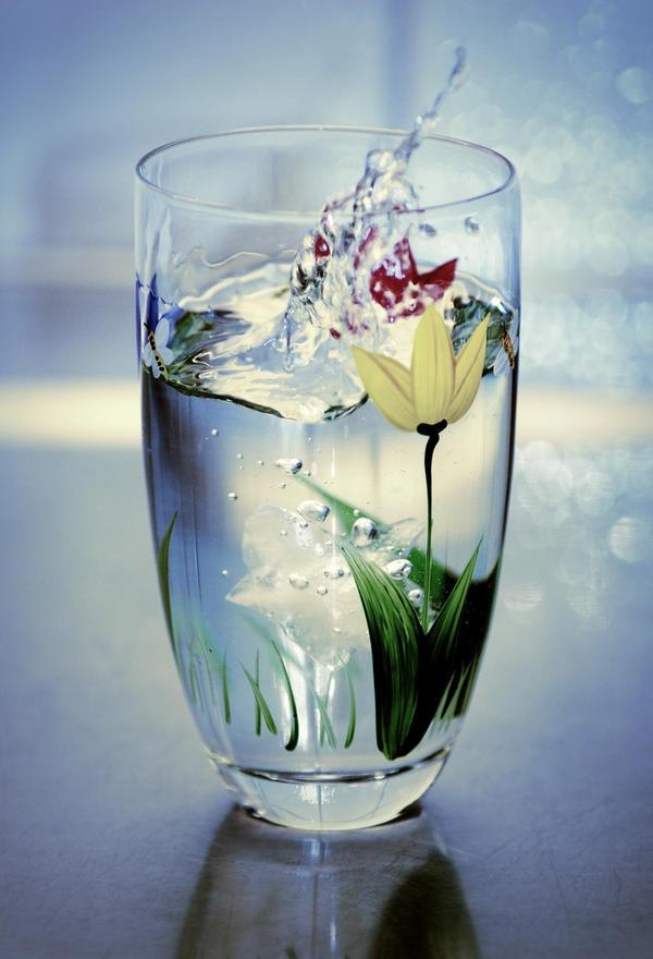 How Often Should You Drink Green Juice