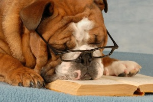 http://www.comicbookmom.com/2012/08/does-your-dog-help-your-child-read.html