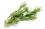 http://news.discovery.com/human/life/sniffing-rosemary-improves-memory-130409.htm
