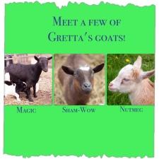 http://www.grettasgoats.com/p/meet-goats.html