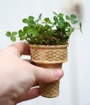 http://www.designmom.com/2013/02/starting-an-edible-garden/